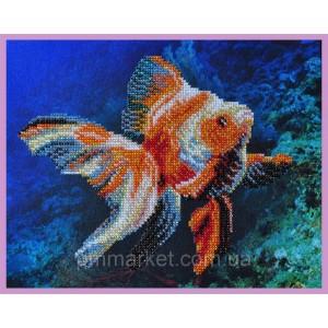 Набор для вышивки бисером Золотая рыбка