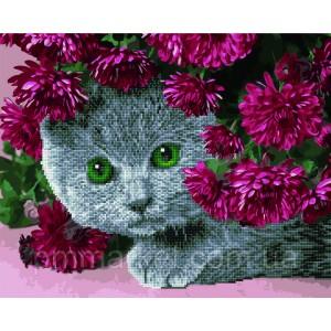 Алмазные картины-раскраски - Британец в цветах