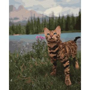 Бенгальская кошка у гор