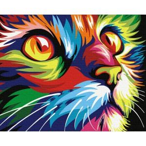 Красочный кот
