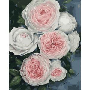 Бутоны пышных роз