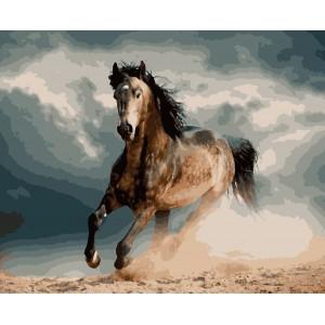"""Картины по номерам """"Конь в яблоках"""" 40*50см"""